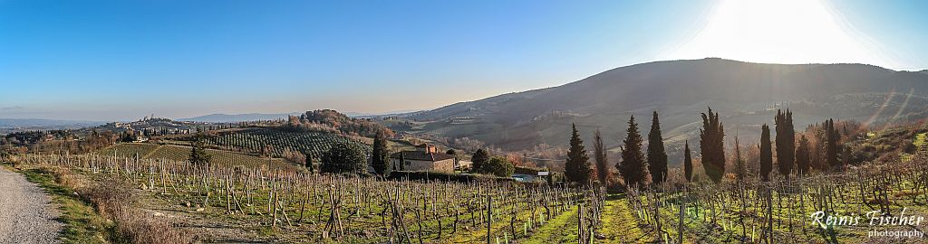 Panorama photo of vineyards in Tuscany