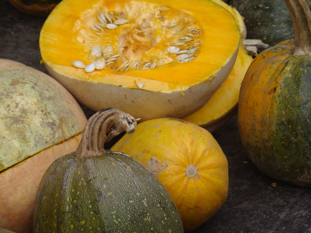 Pumpkins for sale at Tbilisi Dezerter market