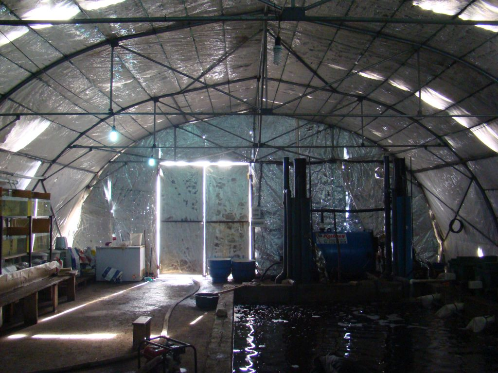 Fish Farm in Sartichala