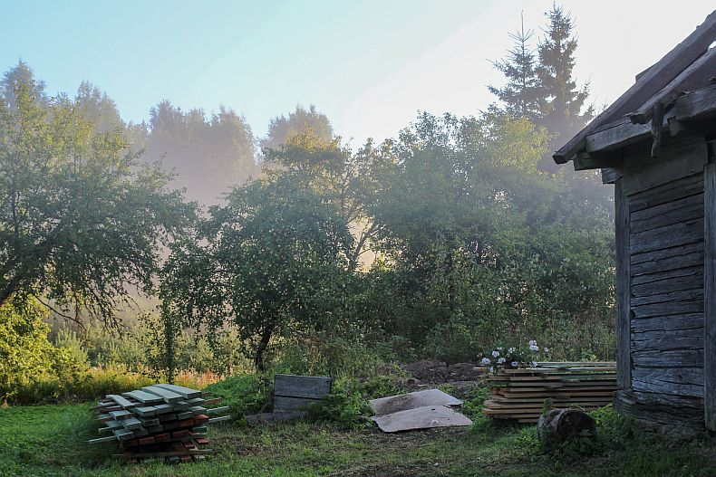 Mist in our backyard territory