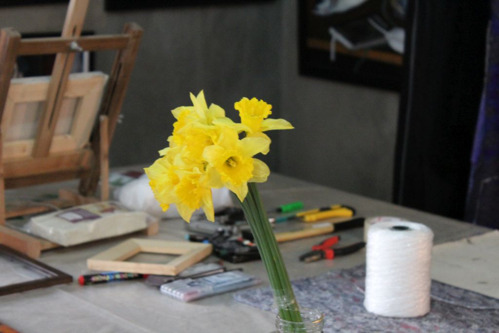 Daffodils at Kon-Tiki art studio