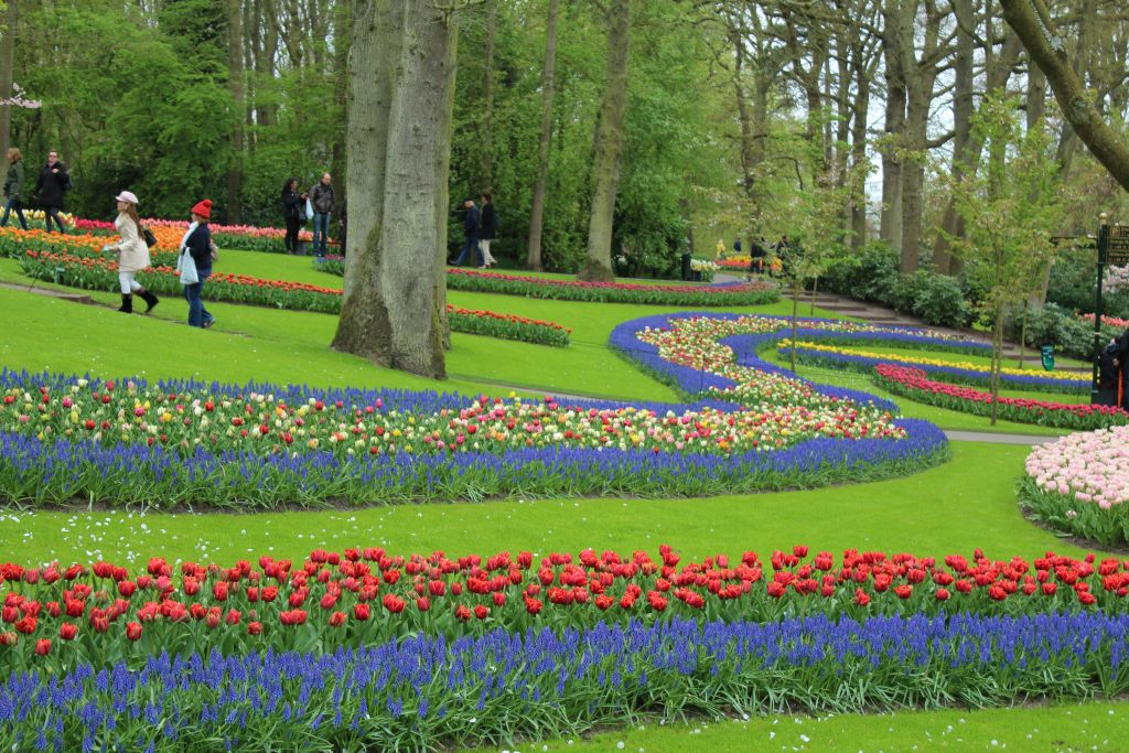 River of Flowers at Keukenhof's garden