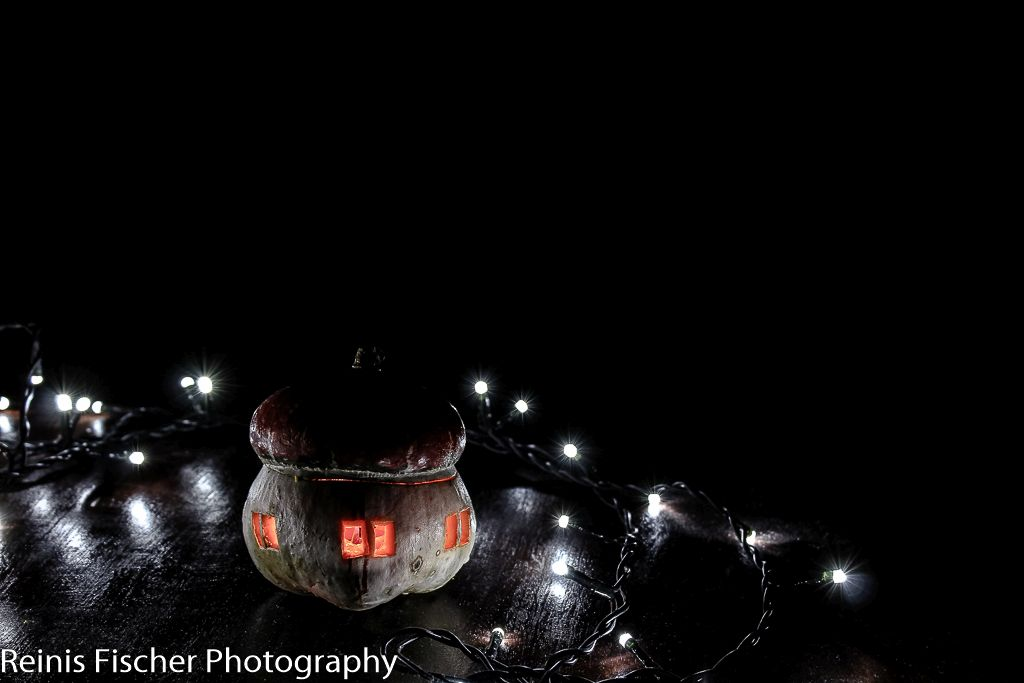 A pumpkin house photography