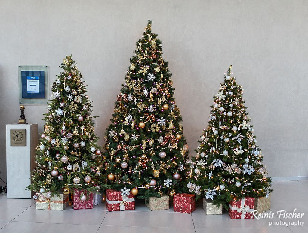 Christmas trees at Radisson Blu Iveria Hotel lobby in Tbilisi