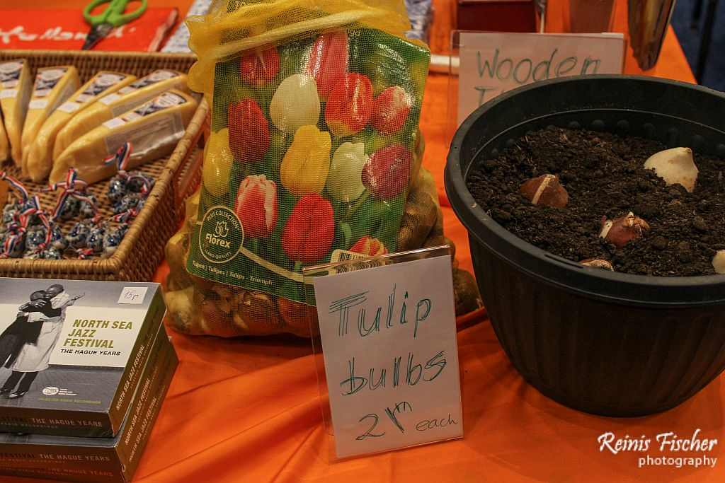 Tulip Bulbs from The Netherlands embassy in Tbilisi