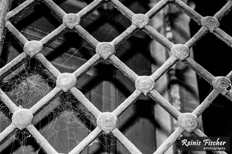 Window grating with spider web