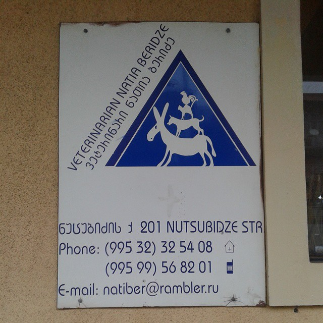 Logo and address details for Natia Beridze veterinary clinic