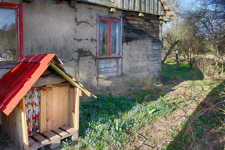 Dog house and snow drops in front of hour house