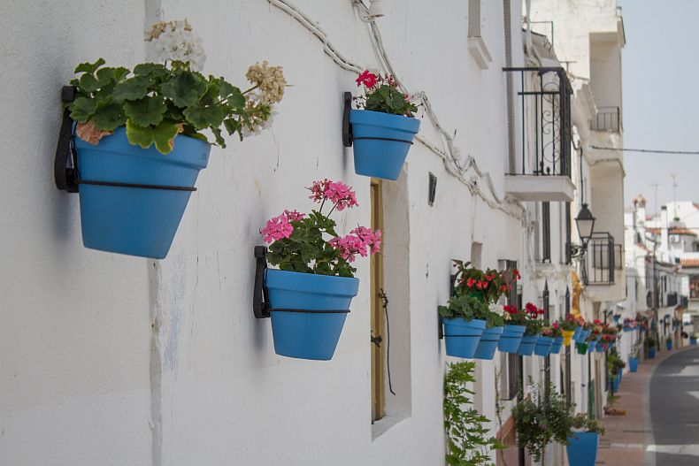 Flowers in streets of Estepona