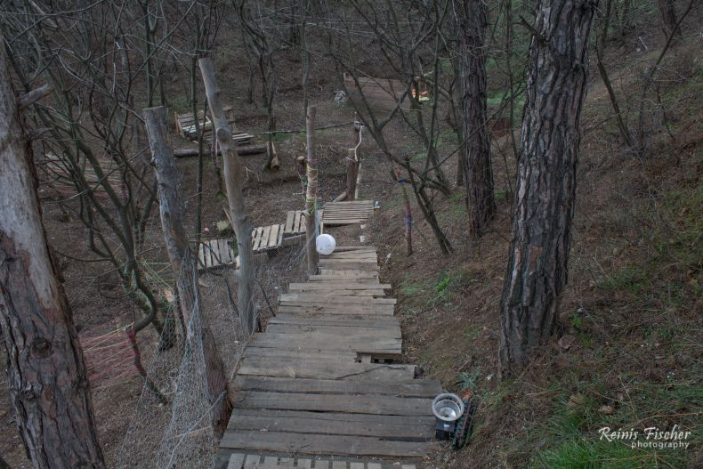 Wooden stairs in the middle of nowhere