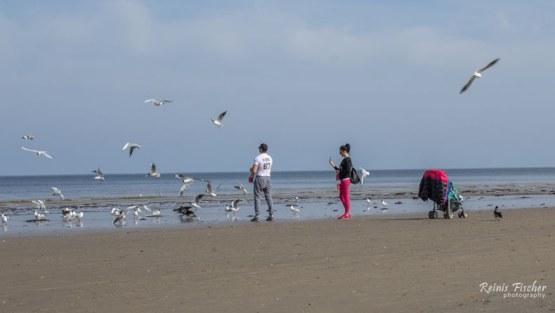 New parents feeding seagulls at Jūrmala beach
