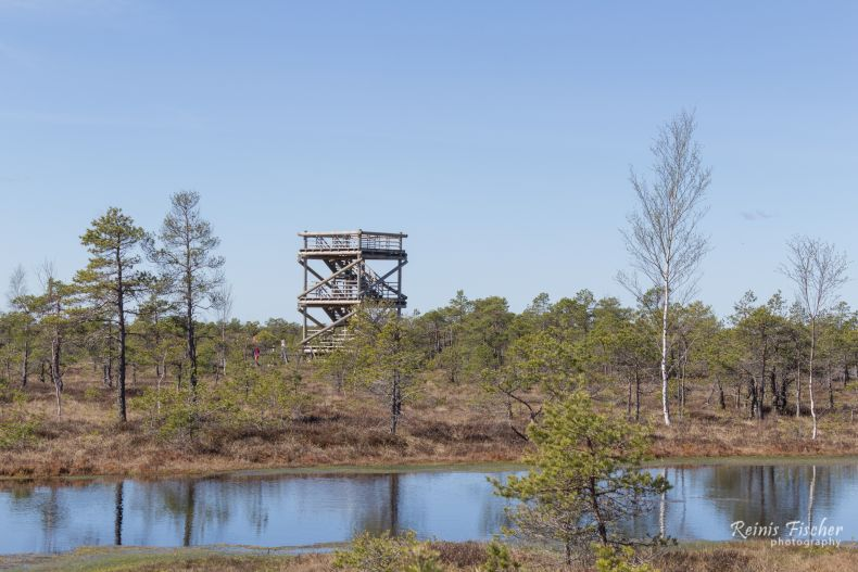 Bird observation deck in Kemeri bog