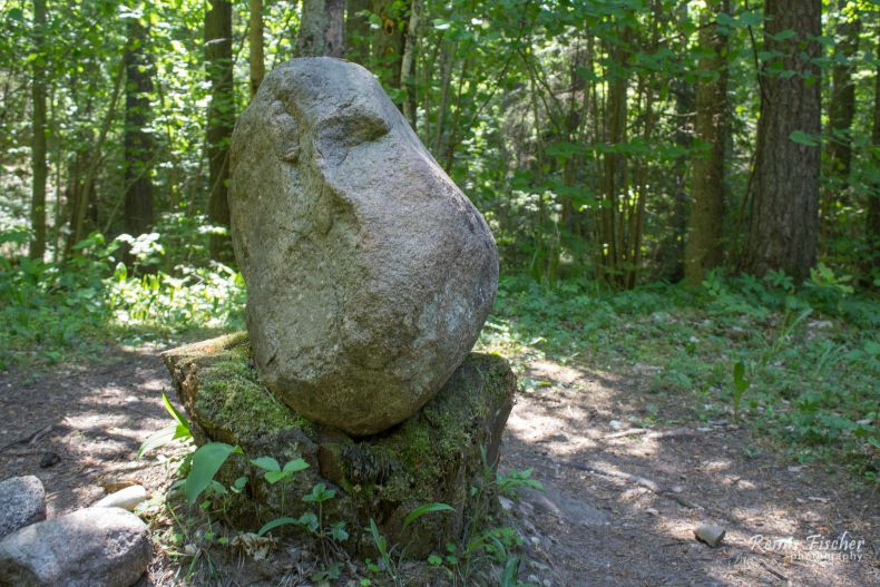 Rock at Pokaini forest