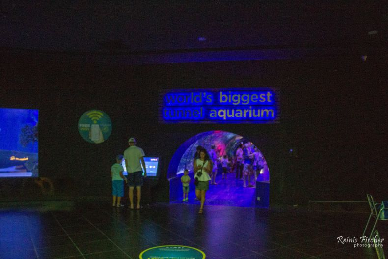 Worlds biggest tunnel - aquarium