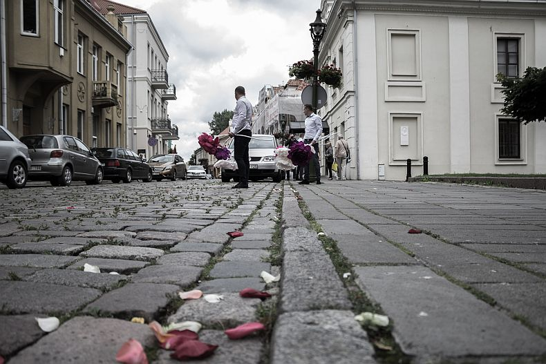 Rose leaves in the streets of Kaunas