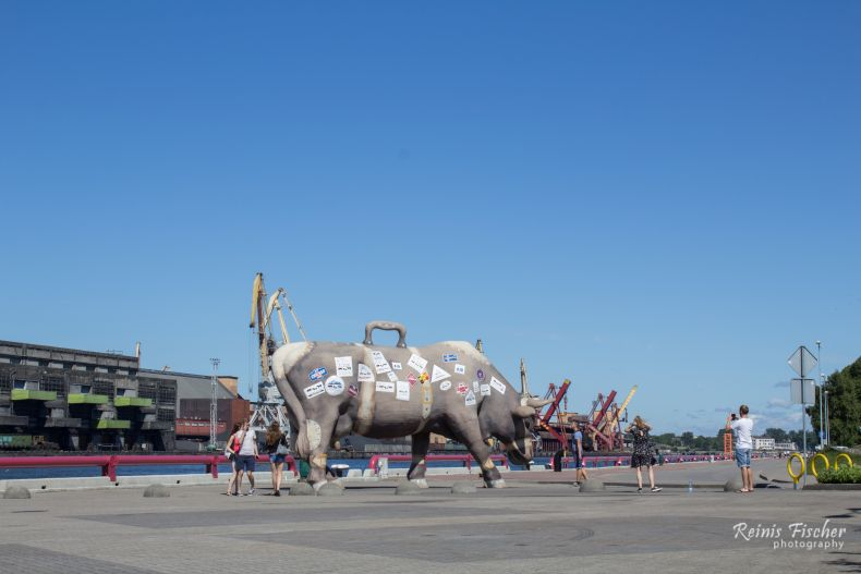 Cow-traveler sculpture in Ventspils